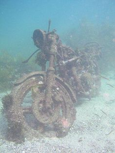 motorcycle in the sea Abandoned Ships, Abandoned Cars, Abandoned Buildings, Abandoned Places, Lost Places, Motorcycle Art, Ride Or Die, Shipwreck, Underwater World