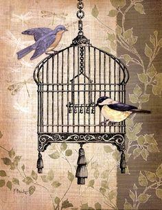 Posterazzi Botanical Birdcage II Canvas Art - Paul Brent x Decoupage Vintage, Decoupage Paper, Vintage Pictures, Vintage Images, Stencil, Paper Birds, Bird Cages, Vintage Birds, Bird Art