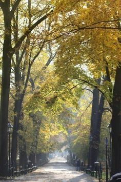 Krakow, Planty, Source: http://fotoodyseja.blogspot.com/2015/11/jesien-na-plantach.html?m=1
