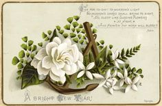 White Rose Greenery Gold Anchor Blessing Verse Antique Victorian New Year Card
