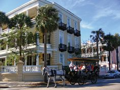 A Charleston must! Take a horse drawn carriage tour and explore the history and beauty of the city!