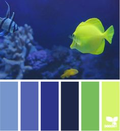 Design Seeds - Underwater Hues. Repinned by http://www.pcpolyzine.com.