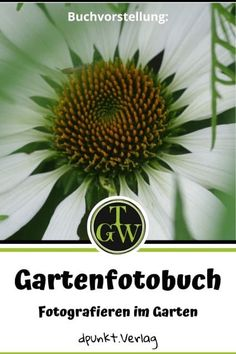 Das Gartenfotobuch! Fotografieren im Garten! - Topfgartenwelt - Gartenblog | Foodblog | Familienblog Lightroom, Plants, Photo Tips, Image Editing, Photography Basics, Prime Lens, Book Presentation, White Photography, Good Photos