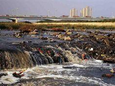 الفساد البيئي في البحر