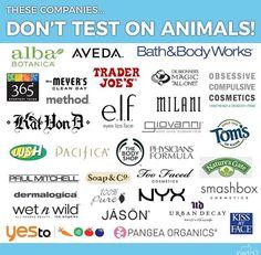 Rite Aid Stock Quote Custom Rite Aid And Cvs Genericstore Brands Are Cruelty Free Cruelty . Inspiration Design