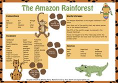 This mat will support your pupils when writing a non-chronological report about the Amazon Rainforest. It can be printed and laminated to use in the classroom. It includes suggestions for connectives to link clauses, key Amazon Rainforest vocabulary, including all the countries in which the Amazon Rainforest can be found, ideas for useful phrases for their report and useful adjectives.