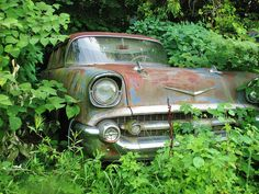 '57 CHEVY WAGON IN THE WEEDS | Flickr - Photo Sharing!