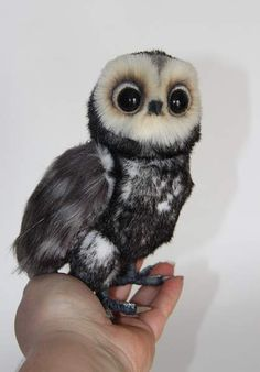 black owl By Averina Olesya - Bear Pile