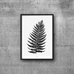 Black & White – Fern Leaf Poster Black and white nordic style – a unique…