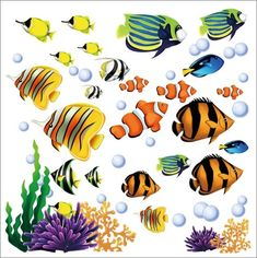 Tropical Fish Wall Stickers Decals - Under The Sea Ocean Fish Wall Art