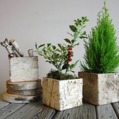 birch bark vases, wood boxes CHRISTMAS TREE arrangement square wedding flower pot, centerpieces, planter woodwork wood boxes
