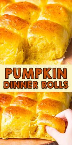 Pumpkin dinner rolls bread time for fall! Pumpkin dinner rolls bread is the best choice for Halloween and Thanksgiving. Because of using pumpkin puree, the bread looks pretty with orange color. Happy cheerful and grateful Thanksgiving with your family!