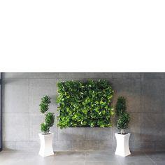 Strak design nodig maar toch met groen? Kies voor een levend schilderij. Live Picture, Planter Pots, Deco, Creative, Interior, Design, Indoor, Decor, Deko