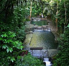 These jungle pools look truly awesome - when can I go please!?