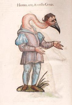 Homo, ore & collo Gruis - Homme à tête de grue.  Tiré de l'ouvrage Monstrorum historia, cum Paralipomenis historiae omnium animalium. © Anne Gautherot  Coll. BM Dijon, (cote 10318) http://www.bm-dijon.fr/