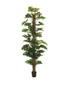 Pianta Artificiale 210 cm Verde su Amazon BuyVIP