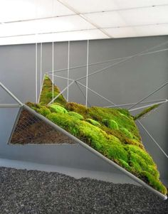 Hanging Moss Garden from the moistscape Installation, Henry Urbach Gallery, New York NY images via FreeCell Landscape Architecture, Landscape Design, Garden Art, Garden Design, Indoor Palms, Moss Art, Gardening, Installation Art, Backyard Landscaping
