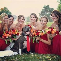 Pup with all the bridesmaids! So cute!