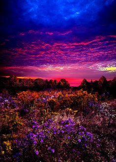 Wow - Once in a Lifetime! by Phil Koch