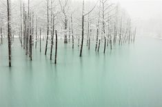 japan landscape photography