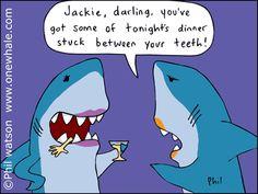 Avoid the embarrassment of having food stuck in your teeth by flossing regularly. Shark Jokes, Cat Jokes, Dental Fun Facts, Dental Life, Shark Art, Dental Humor, Funny Cartoons, Funny Facts, Funny Pictures