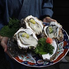 Giant oysters in Japan