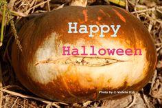 Happy Halloween by Violeta Dyli photographer