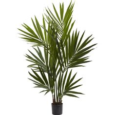 "If you're looking for a ""sunny"" artificial plant addition to your home or office, then this slice of the tropics should suffice. This impressive kentia palm stands at a proud and is covered with 230 gorgeous leaves to bring back pleasant memories of favorite beach vacations. Never needing water, this palm looks good in any type of environment, and also makes a wonderful gift."