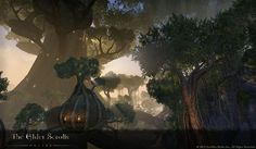elder scrolls valenwood eldenroot - Google Search