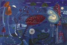 Kit Boyd - Magic Mushrooms - Midnight