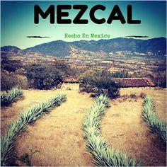 #Mezcal #Mexico