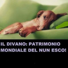 il divano: patrimonio mondiale del nun esco!!!