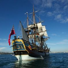 Buzzing: Archaeologists Believe Theyve Found Captain Cooks Ship Endeavour