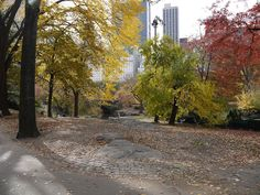NYC Central Park in autumn
