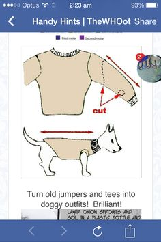 DIY Fun Crafts- Recycle Old Sweater's for your dog. in case you're feeling crafty ; Diy Pullover, Alter Pullover, Cool Diy, Easy Diy, Fun Diy, Simple Diy, Diy Pour Chien, Recycled Sweaters, Recycled Clothing