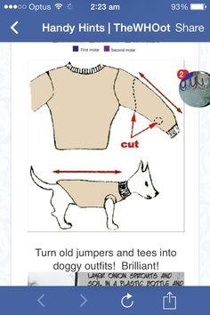 Doggie jumper
