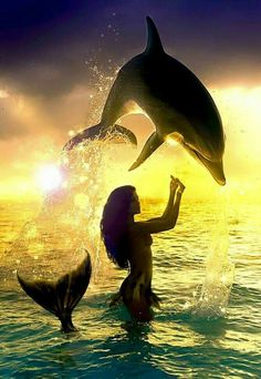 Mermaid Playing With Dolphin / Mermaid 🌕 Magic & Mystery✨ # 7798 Fantasy Mermaids, Real Mermaids, Mermaids And Mermen, Fantasy Creatures, Mythical Creatures, Sea Creatures, Siren Mermaid, Mermaid Kisses, Tattoo Mermaid