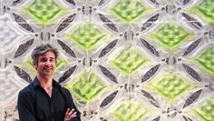 These Algae Farms Cover The Walls Of Buildings And Soak Up Carbon