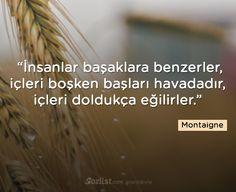 İnsanlar başaklara benzerler, içleri boşken başları havadadır, içleri doldukça eğilirler #montaigne #sözleri #anlamlı #şair #kitap