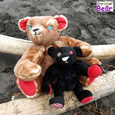 "Cryoow! bear ""Redfoot"" and Cryoow! bear ""Cuddlealot"" at the beach."