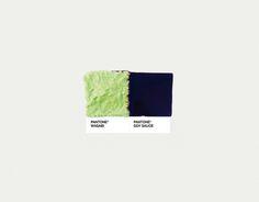 pantone pairings .by David Schwen
