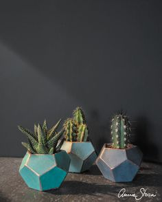 Paint your own planters