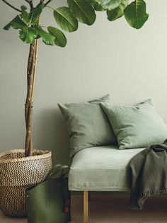 The new Jotun Lady colors are here, and the new chart is called Rhythm of Life. Because life at home has its own pulse, a rhythm that effects the way we live, choices we take and how we see the world. Jotun Lady, Color Trends 2018, 2018 Color, Green Rooms, Home Design, Nordic Design, Wall Colors, Colours, Paint Colors