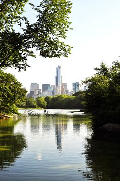 Download this photo of #midtown #Manhattan for free and use it for your #blog, social network or commercial purpose [ #central #park]. ----> http://viid.me/qQtUPJ