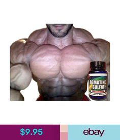 How to train for mass arnold schwarzeneggers blueprint training 995 pro force agmatine sulfate xtreme pump nootropic factor bodybuilding supplements ebay fashion malvernweather Images