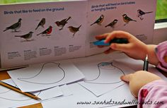 Sun Hats & Wellie Boots: Birdwatching - A Simple Way to Study & Record the Birds Outdoor Activities For Kids, Outdoor Learning, Kids Learning, Big Garden Birdwatch, Bird Tables, Wellies Boots, Birdwatching, Learning Environments, Sun Hats