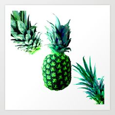 Collect your choice of gallery quality Giclée, or fine art prints custom trimmed by hand in a variety of sizes with a white border for framing. Malibu Pineapple, Exotic Art, Fine Art Prints, Gallery, Roof Rack, Art Prints