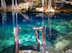 The best cenotes in the Yucatan Peninsula can be reached from Merida. Read this article and start planning your visit!