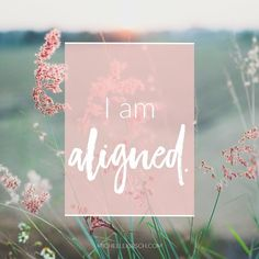 This week's #MondayMantra is 'I am aligned.' What does it mean to feel aligned in your life? How can you feel more in alignment?