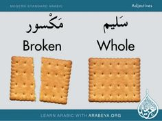Learn Adjectives and their opposites In Arabic. Arabeya Language School was established in 2003 with the purpose of providing intensive Arabic courses for all … Teaching English Grammar, English Language Learning, English Vocabulary, English Phrases, Learn English Words, Modern Standard Arabic, Spoken Arabic, Arabic Sentences, English Language Course